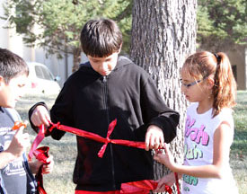 Students tied red ribbons on trees around campus.